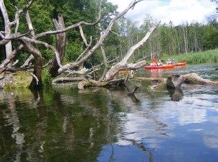 Malownicza rzeka