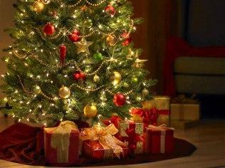 Boże Narodzenie 2019 - Willa Kora