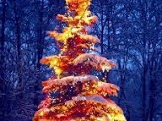 Boże Narodzenie 2020 - Willa Misiaga Apartamenty
