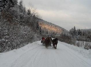 Ferie zimowe - Domki Matiaszówka. Święta, Sylwester, Ferie. BON