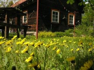 Imprezy integracyjne - Chata w Puszczy