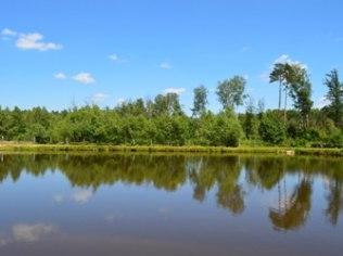 wiosna/weekend majowy - Gospodarstwo agroturystyczne Kruszyna - Zaklików