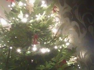 Boże Narodzenie 2018 - Wynajem pokoi Romanka