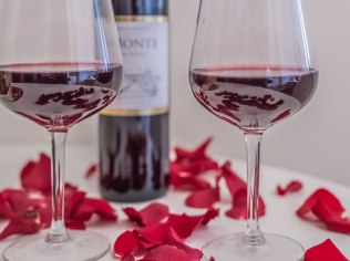 Walentynki 2019 - Aparthotel Delta Białka