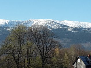 Wigilia w rodzinnej atmosferze - Ośrodek Konferencyjno Wypoczynkowy Horyzont