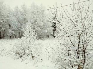 Ferie zimowe 2021 - Górska Dolina