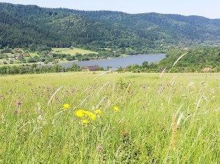 Wakacje w górach i nad jeziorem - Orlik