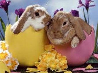 Wielkanoc!!!
