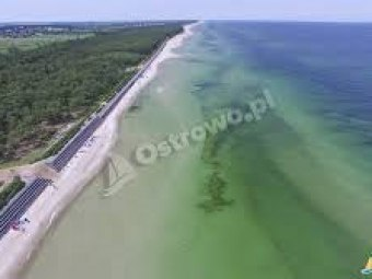 Plaża Ostrowo