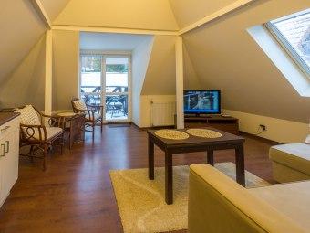 Apartament Brązowy